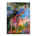 Trademark Fine Art 32 x 24 Wooden Frame Giraffe Artwork