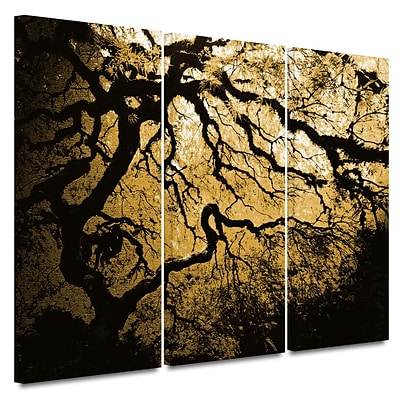 ArtWall Gold Rendition: Japanese Tree 3 Piece Gallery Wrapped Canvas Art By John Black, 36 x 54