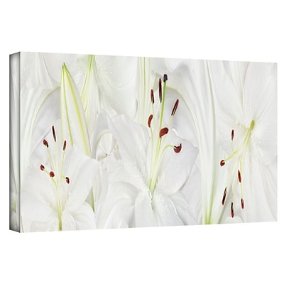 ArtWall Lily Landscape Gallery Wrapped Canvas Art By Cora Niele, 16 x 48
