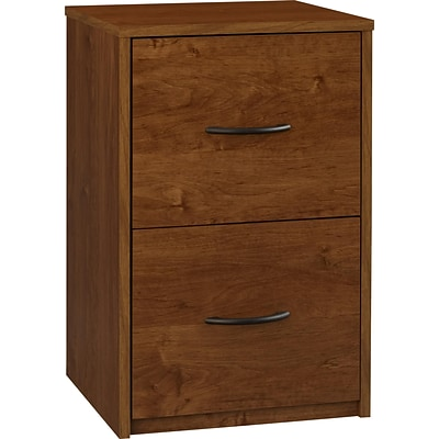 Ameriwood™ 24.12 Particle Board File Cabinet, 2-Drawer, Bank Alder
