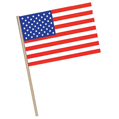 Beistle 4 x 6 Plastic American Flag; 36/Pack