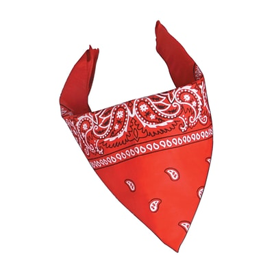 Beistle 22 x 22 Bandana, Red