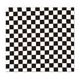 Beistle 22x22 Checkered Bandana