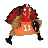 Beistle Plush Touchdown Turkey Hat, One Size