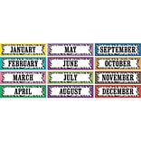 Teacher Created Resources® Colorful Zebra Stripes Monthly Headliners