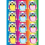 Ashley 8 1/2 x 11 Die-Cut Magnet, Color Owls, 12/Pack