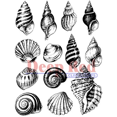 Deep Red Stamps 3 x 4 Cling Stamp; Seashell