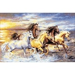 Riolis® 23 5/8 x 15 3/4 Counted Cross Stitch Kit, In The Sunset