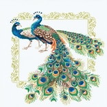 Riolis® 18 7/8 x 18 7/8 Counted Cross Stitch Kit, Peacocks