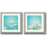 Amanti Art Delicate Skies of Blue - Set of 2 Framed Art by Carolyn Cochrane