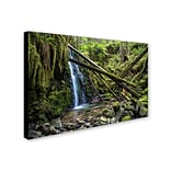 Trademark Pierre Leclerc Wilderness Gallery-Wrapped Canvas Art, 30 x 47