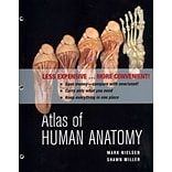 Atlas of Human Anatomy by Mark Nielsen & Shawn D. Miller