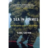 A Sea in Flames Paperback Book