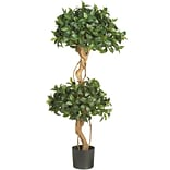 5233 4 Sweet Bay Topiary Tree in Pot
