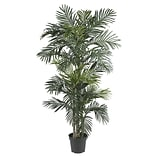 5289 Golden Cane Palm Silk Tree in Pot