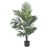 5296 5 Kentia Palm Silk Tree in Pot