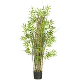 6569 5 Bamboo Grass Silk Plant in Pot