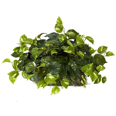 Nearly Natural 6708 Pothos Ledge Desk Top Plant