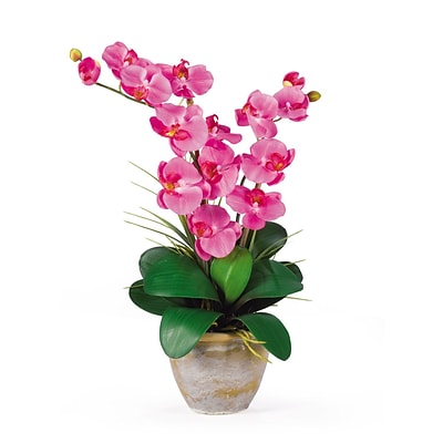 Nearly Natural 1026-DP Double Phalaenopsis Floral Arrangements, Dark pink