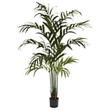 5356 Kentia Palm Silk Tree in Pot