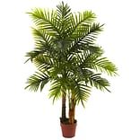 4 Areca Palm Tree Real Touch Plant in Pot
