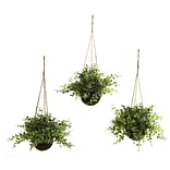 Eucalyptus Hanging Plant in Basket (3)