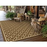 Geometric Brown/ Ivory Indoor/Outdoor Machine-made Polypropylene Area Rug (37 X 56)