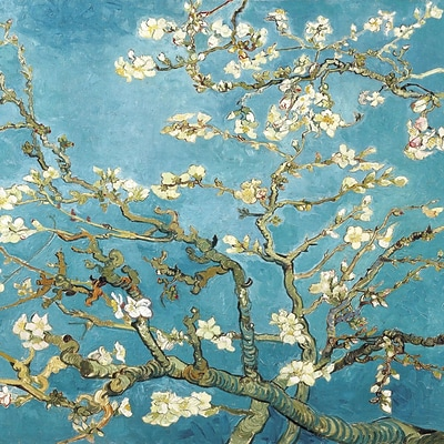 Diamond Decor Van Gogh Almond Blossoms Stretched Giclee Canvas Art