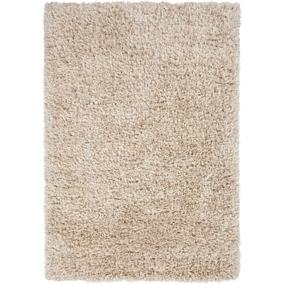 Surya Rhapsody RHA1002-810 Hand Woven Rug, 8 x 10 Rectangle