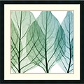 Celosia Leaves II 26 x 26 inch
