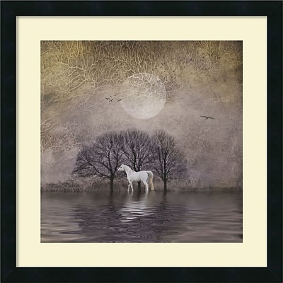 Amanti Art White Horse in Pon Framed Art Print by Dawne Polis, 22H x 22W