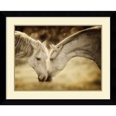 Amanti Art Connection Framed Art Print by Phyllis Bruchett, 25.63H x 31.63W