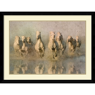Amanti Art Run Free Framed Art Print by Phyllis Bruchett, 32.13H x 42.63W