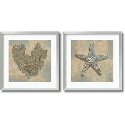 Amanti Art Aqua Fan Coral & Starfish - Set of 2 Framed Print by Caroline Kelly, 26.88H x 26.88W