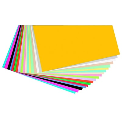 Pacon® Card Stock Scrapbook Pages, 12 x 12, 160/Pack, Assorted