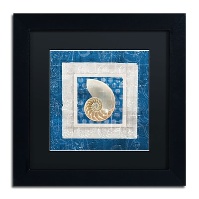 Trademark Belinda Aldrich Sea Shell II on Blue Art, Black Matte With Black Frame, 11 x 11