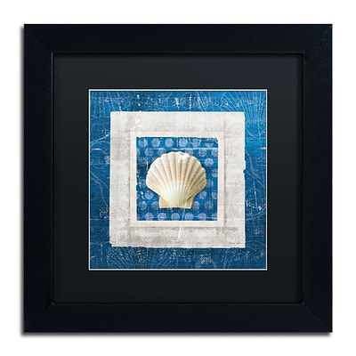 Trademark Belinda Aldrich Sea Shell III on Blue Art, Black Matte With Black Frame, 11 x 11