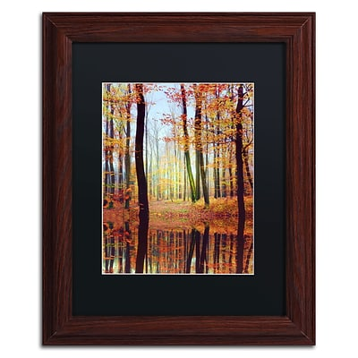 Trademark Philippe Sainte-Laudy Fall Mirror Art, Black Matte With Wood Frame, 11 x 14