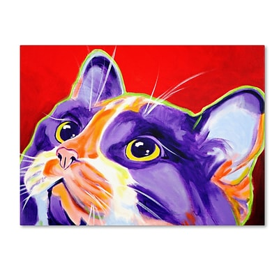 Trademark DawgArt Cat Issa Gallery-Wrapped Canvas Art, 18 x 24