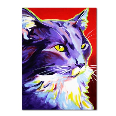 Trademark DawgArt Cat Kelsier Gallery-Wrapped Canvas Art, 24 x 32