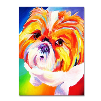 Trademark DawgArt Divot Gallery-Wrapped Canvas Art, 24 x 32