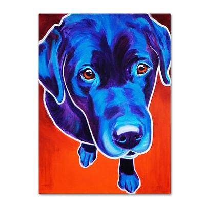 Trademark DawgArt Lab Olive Gallery-Wrapped Canvas Art, 14 x 19