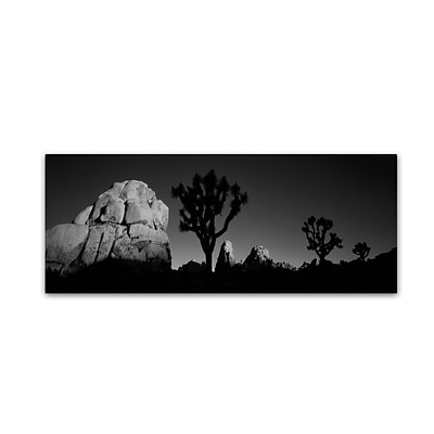 Trademark David Evans First Light B&W-Joshua Tree NP Gallery-Wrapped Canvas Art, 16 x 47