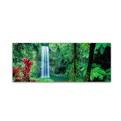 Trademark David Evans Milla Milla Falls Gallery-Wrapped Canvas Art, 10 x 32