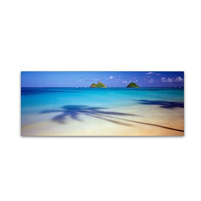 Trademark David Evans Mokulua-Hawaii Gallery-Wrapped Canvas Art, 8 x 24