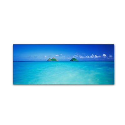 Trademark David Evans Twin Islands-Oahu Gallery-Wrapped Canvas Art, 8 x 24
