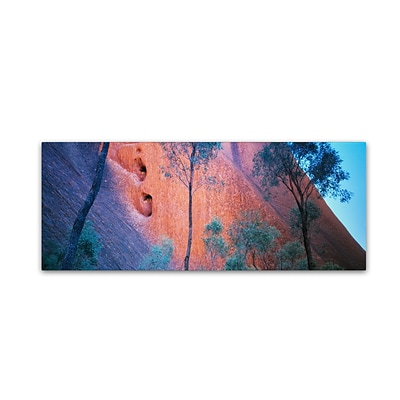 Trademark David Evans Uluru Up Close Gallery-Wrapped Canvas Art, 8 x 24