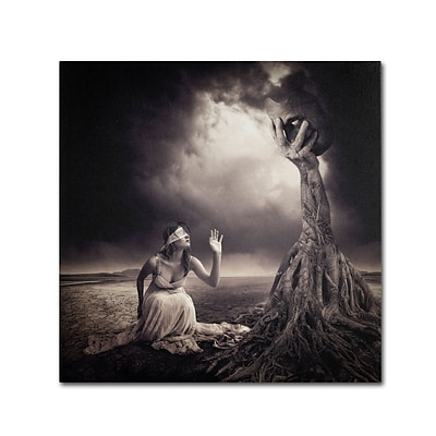Trademark Erik Brede Is There Anybody Out There Gallery-Wrapped Canvas Art, 18 x 18