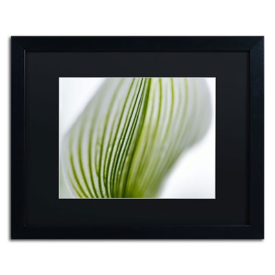 Trademark Kurt Shaffer Orchid Abstract Blurred Lines Art, Black Matte With Black Frame, 16 x 20