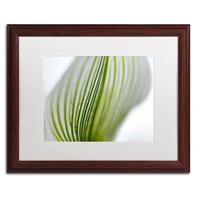 Trademark Kurt Shaffer Orchid Abstract Blurred Lines Art, White Matte With Wood Frame, 16 x 20